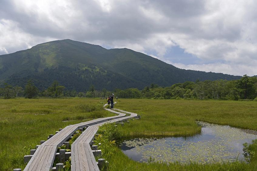 比較的平坦な木道を歩くので、どなたでも気軽に歩けます