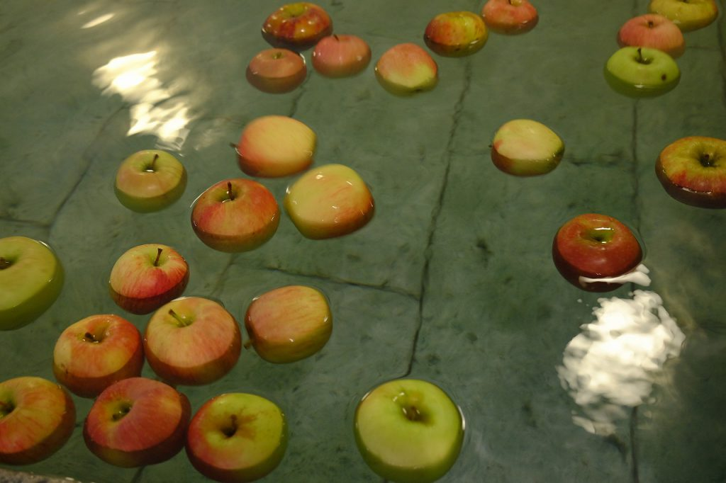 甘酸っぱいりんごの香りがほわんと漂っていて癒されます