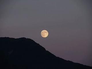 昔の人も愛でた月